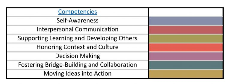 Competencies_Leadership