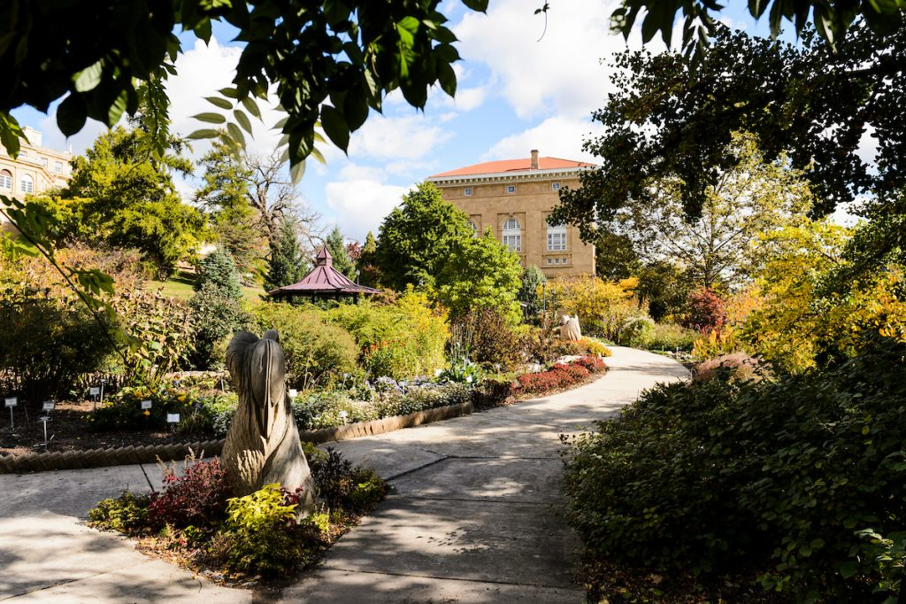 photo: botany garden with trees and landscaping