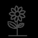 icon: flower